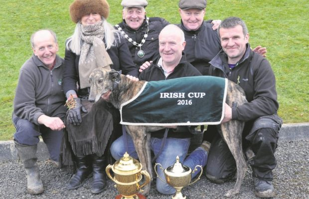 Irish Cup 2016 presentation