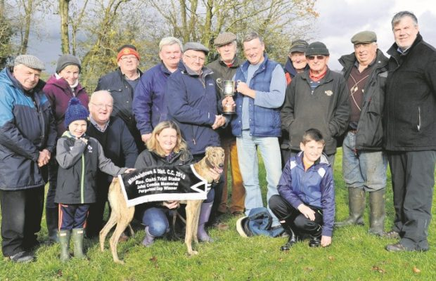 The reserve Oaks Trial Stake ran in Mitchelstown CC was won by Ciara Collins, Aghadown Luna. Sponsor David Condon presents the John Condon Cup to trainer PJ Collins.  Also present Moira Roche with the dog, Patrick Flynn, Secretary Joan Cummins, Mick Walsh with Aron Horgan, John Fitzgerald, John Norris, Chairman Michael Horgan, Treasurer Richard Piggott, Billy Barrett, President John Barrett, ICC president Gerry Meehan and Oisin Leech